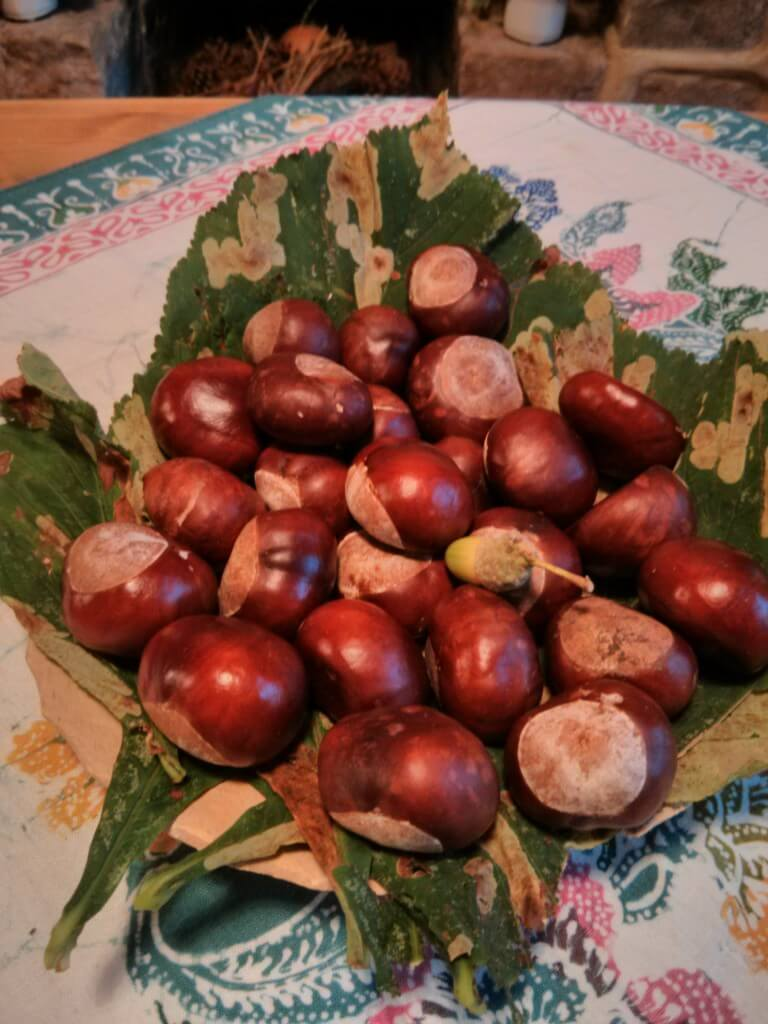How To Conquer Conkers Creatively Angelika S German