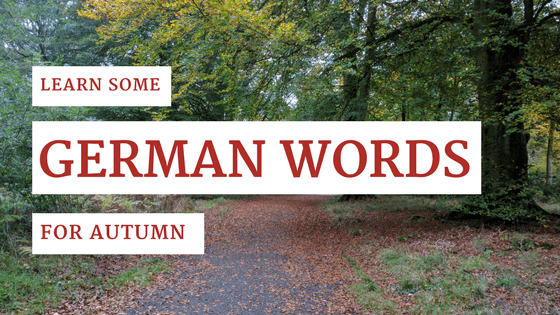 The seasons in German - Herbst