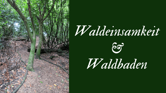 Waldeinsamkeit & Waldbaden - two untranslatable German words