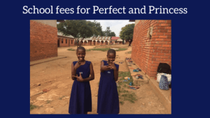https://www.gofundme.com/f/school-fees-for-Perfect-and-Princess