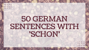 50 German sentences with 'schon'